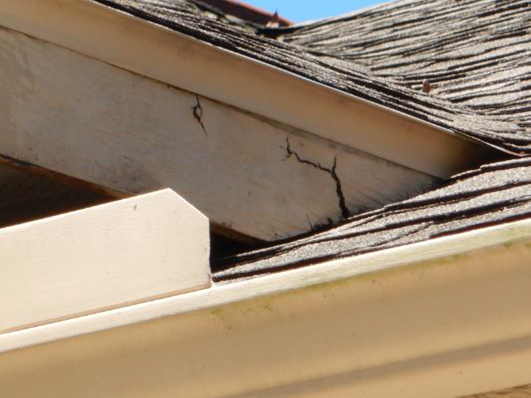 Check For Damage To Your Roof